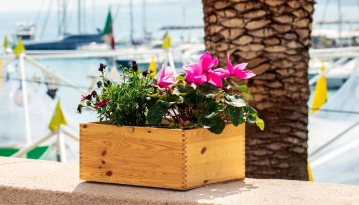 planter with flowers in it
