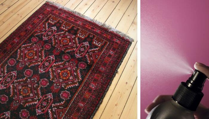 waterproof the rug with a spray