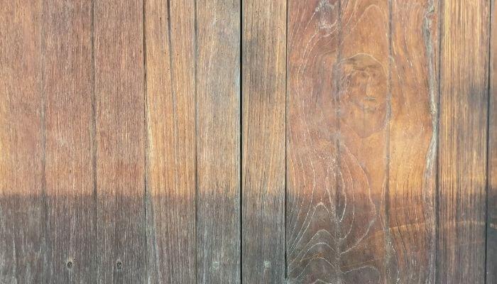 damp wood