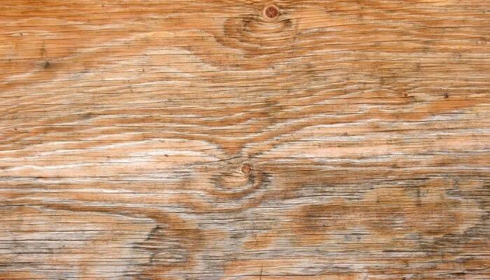 water damaged plywood